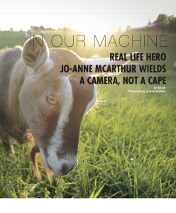 "Feature: ""The Ghosts In Our Machine: Real Life Hero Jo-Anne McArthur Wields a Camera, Not a Cape"""